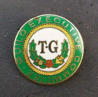 T-g Townswomen's Guild Executive Committee Badge Nutg • 5.90£