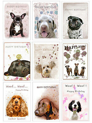 £1.90 • Buy Dogs Greeting Cards  Happy Birthday A5 + Envelope + Cello Bag Blank Inside
