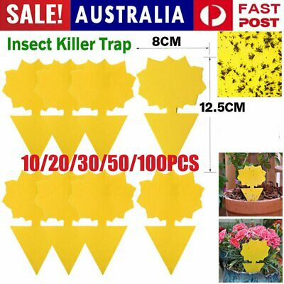 AU8.87 • Buy 30/50/100X Dual Sided Sticky Trap Insect Killer Whitefly Thrip Fruit Fly Gnat HG