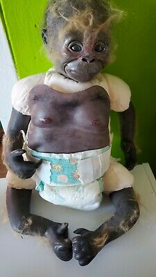 Vintage 2006 Bountiful Baby Monkey Chimp Reborn Rare 17  • 112.35£