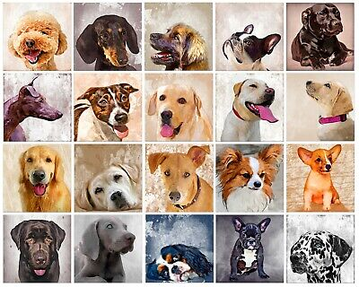 Dogs Personalised Greeting Cards Happy Birthday All Occasions Gold Quote Card • 2.99£