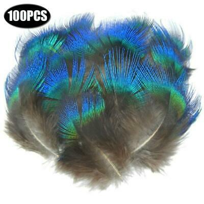 100pcs Natural Peacock Feather Blue Fan Craft Hat Arts Costume Clothing Decor • 6.25£