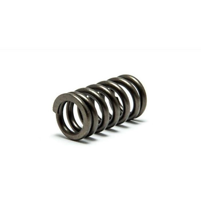 $14.75 • Buy Psychic Exhaust /Intake Spring For Yamaha YZ450F 2003-2009