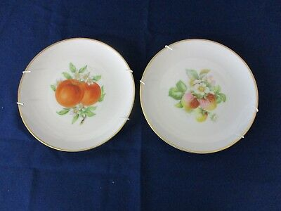 2 Decorative Wall Plates With Hanging Brackets Fruit Design With Gold Rim • 20£