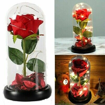 AU26.99 • Buy Enchanted Forever Rose Flower In Glass LED Night Light Valentines Day Gift TA