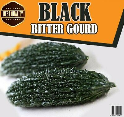 £3.54 • Buy 10Pc Rare Black Pearl Bitter Gourd Vegetable Herb Seeds A GRADE High Quality