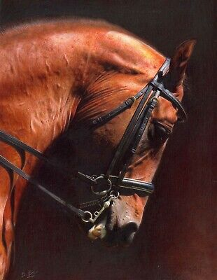 £100 • Buy Royal Artist Darren Baker Signed Limited Edition Print STOCK CLEARANCE Equine