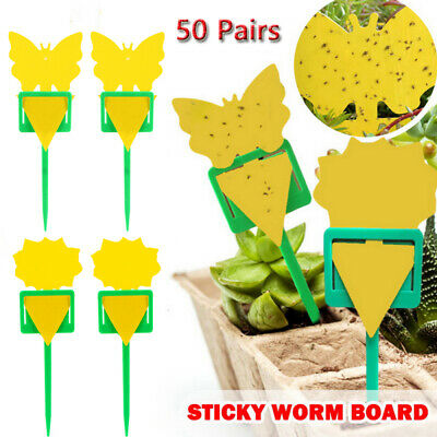 AU20.99 • Buy 50x Yellow Double-Sided Sticky Trap Insect Killer Whitefly Thrip Fruit Fly Gnat