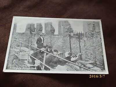 Kissing The Blarney Stone.Very Good Condition.Posted No Stamp. • 6.99£