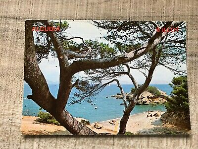 Collectable Postcard Spain Alcudia S'illot Mallorca (e266) • 2.49£