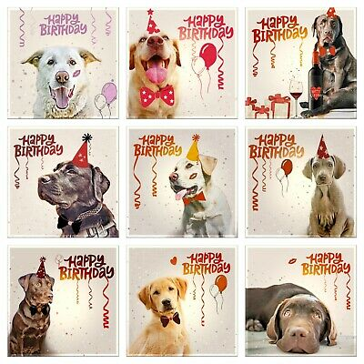 Labrador Greeting Cards Happy Birthday Mixed Designs Dogs • 1£