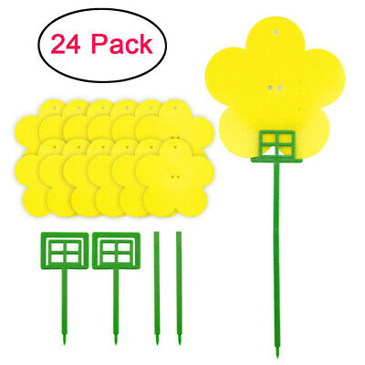AU20.99 • Buy 24x Flower Sticky Trap Insect Killer Whitefly Thrip Fruit Fly Gnat Leafminer