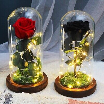 AU27.98 • Buy Beauty Beast LED Light Enchanted Rose In Glass Dome Valentine's Day Gift Decor