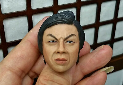 $19.99 • Buy 1/6 BOLO Head Sculpt Bruce Lee IP Man 3 Clothing Enterbay Muscle Body Jet Li