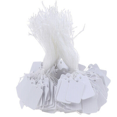 300Pcs Label Tie String Strung Ticket Jewelry Merchandise Display Price Ta YM6K • 5.18£