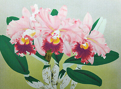 $ CDN689.44 • Buy Chinami Nakajima Torere-A Lithograph Autograph With Seal Edition Available