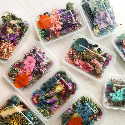 AU9.55 • Buy Assroetd Real Dried Flowers Pressed Leaves For Epoxy Resin Jewelry Making DIY .