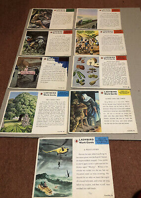 Vintage Ladybird Work Cards - English And Science - Not Full Set - 1960's/1970's • 4.50£