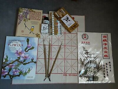 Chinese Painting Set Chinese Brushes, Ink, Paint,  Books, Paper *!HARDLY USED!* • 39£
