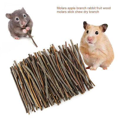 £3.69 • Buy Apple Wood Chew Sticks Twigs For Rabbit Hamster Guinea Pig Small Pets Toy