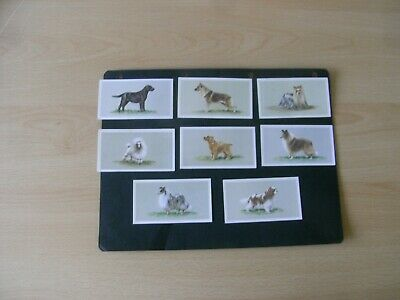 £1.99 • Buy Full Set X 25 Grandee Cigar Cards  Top Dog Collection.1979