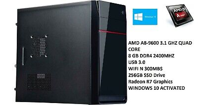 AU299.23 • Buy AMD 10-Core Gaming Computer Desktop PC Tower SSD HDMI 8GB R7 Graphic CUSTOM