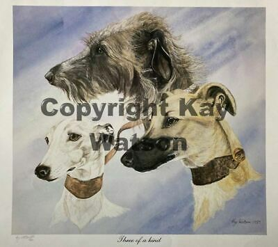 £20 • Buy Limited Edition Print 'Three Of A Kind' Lurchers Gaze Hounds By Kay Watson. NEW.