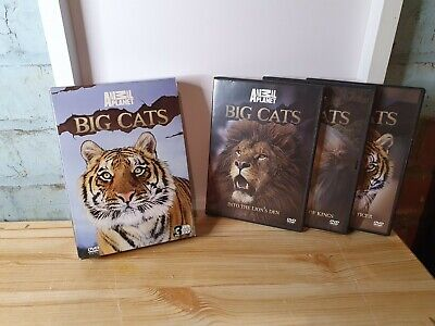 £2.99 • Buy Discovery Channel / Animal Planet - Big Cats - DVD 3 Disc Box Set - UK Region