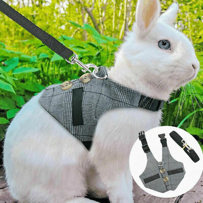 £5.99 • Buy Small Animal Harness Lead Adjustable Rabbit Squirrel Walking Vest For Pet Puppy