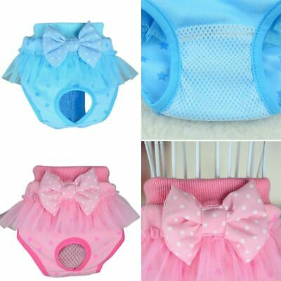 £4.74 • Buy Female Puppy Pet Cat Dog Sanitary Shorts Brief Knickers Bow Underwear Panties