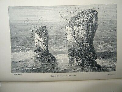 £39.99 • Buy 1872 RECORDS OF ROCKS GEOLOGY NATURAL HISTORY WALES DEVON CORNWALL By SYMONDS ^