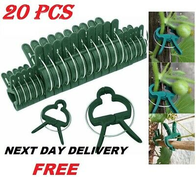 £3.29 • Buy 20 X Garden Plant Clips Seedlings Plants Support Tools Small Large Ties 2 Sizes