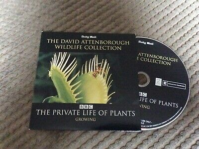 £0.99 • Buy David Attenborough The Private Life Of Plants Growing   Dvd Mail Promo