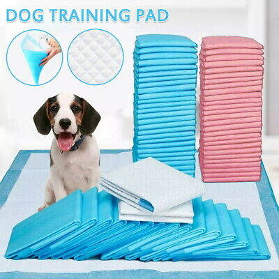 £12.95 • Buy 50/100/200 More Size Large Puppy Training Pads Toilet Pee Wee Mats Cat Pet Dog