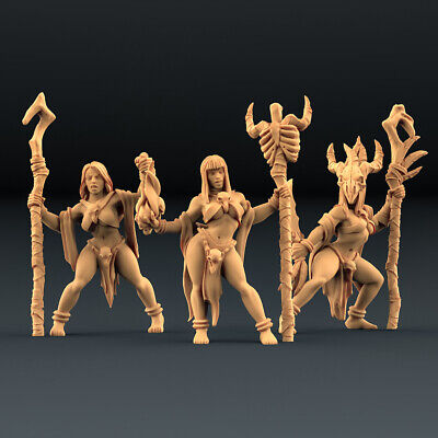 AU40.97 • Buy TRIBAL Priestess SHAMAN MYSTIC Witch Lot Of 3 Pin/Up Dungeons And Dragons, RPG