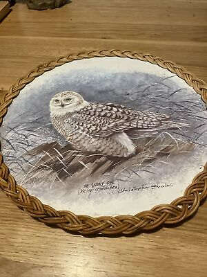 £0.99 • Buy Snowy Owl Wooden Dish (No Reserve!)