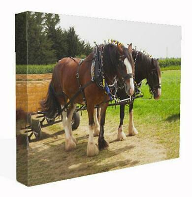 Canvas Print Wall Art Of Working Shire Horses Picture Painting Poster  • 29.99£