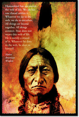 Native American Wisdom Art Photo Print Poster Gift Web Of Life Quote • 9.99£