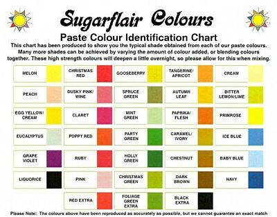 SUGARFLAIR CONCENTRATED SPECTRAL FOOD COLOURING PASTE GEL 50+COLOURS 25g • 4.69£