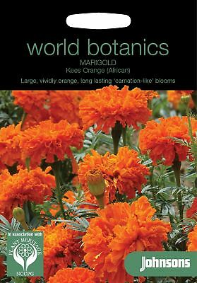 Johnsons World Botanics Flower - Marigold (African) Kees' Orange - 75 Seeds • 2.40£