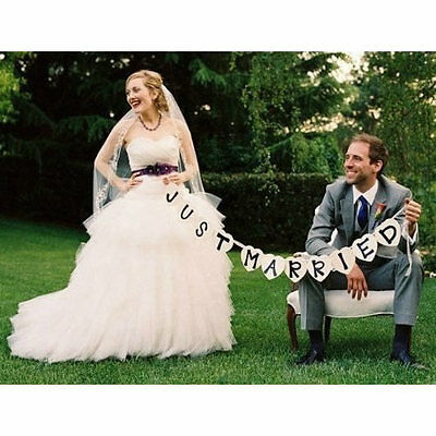 Just Married Garland Wedding Banner Car Bunting Western Venue Party Decor Sign • 3.44£