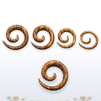 $6.13 • Buy Pair Solid Coconut Wood Spiral Coil Circle Taper Expander Talon Natural 8G-00G