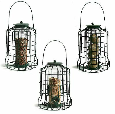 Gardman Squirrel Proof Guard Bird Fat Snax/seed/nut Feeder Garden Hanging Tray • 12.99£