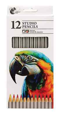 12 Studio Artist Pencils For Drawing Painting Sketching Art Water Colour UK • 2.18£
