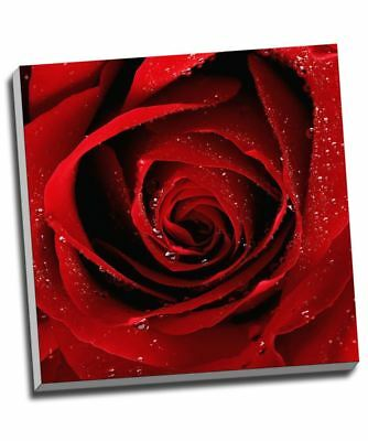 £24.99 • Buy Red Rose Romantic Canvas Print Wall Art 30x20  A1