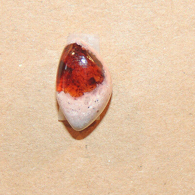£12.22 • Buy Mexican Fire Opal 15x9mm With 7mm Dome Cabochon (11726)