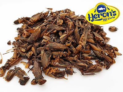 £5.19 • Buy HERONS Natural Dried Crickets BEARDED DRAGON, GECKO, TURTLE, REPTILE FOOD