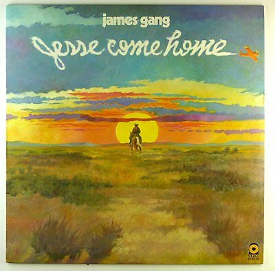 £16.80 • Buy 12  LP - James Gang - Jesse Come Home - A4564 - Washed & Cleaned