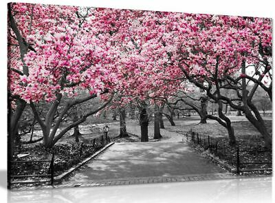 Black & White Wall Art Pink Blossoms Canvas Wall Art Picture Print • 11.99£