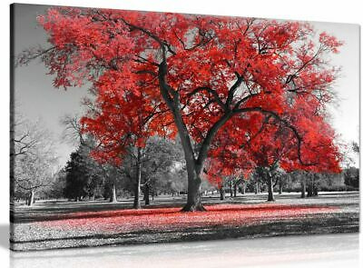 Large Tree Red Leaves Black White Nature Canvas Wall Art Picture Print • 34.99£